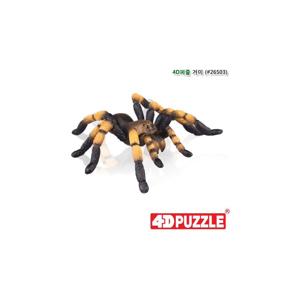 h30 4D퍼즐 거미(26503)