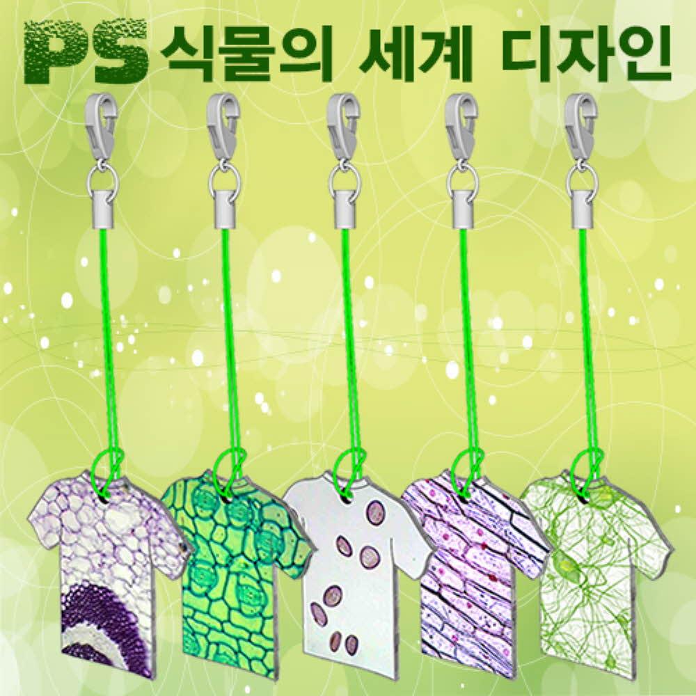(HM)식물의 세계 디자인(PS열쇠고리만들기)-6인용