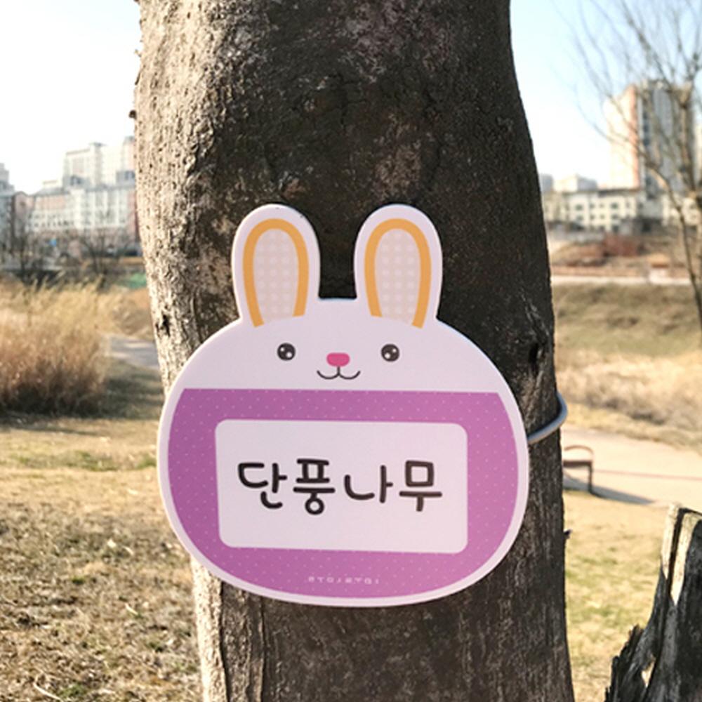 e03 루미루미 수목표찰 나무이름표(나무이름기재필수) 32859
